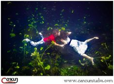 It's wedding season here in Cancun! Make sure to check out our and add a session after your wedding day wtih your Wedding Season, Wedding Day, Underwater Photography, Cancun, Seasons, Check, Pi Day Wedding, Water Photography, Marriage Anniversary