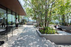 Landscape Walls, Landscape Architecture, Landscape Design, Architecture Design, Courtyard Design, Garden Design, Penthouse Garden, Entrance Design, Side Garden