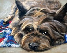 NEEDLEPOINT CANVAS PRINT Cairn Terrier Art Painting by Mary Sparrow of Hanging the moon art studio