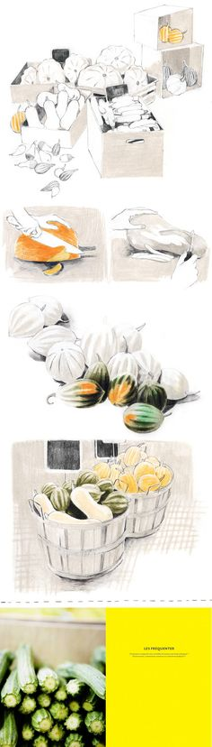 Courges etcitrouilles; by isabelle arsenault