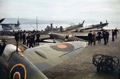 https://flic.kr/p/rm9iie | Seafires , 1942. |  Most probably on HMS Indomitable in the Mediterranean.