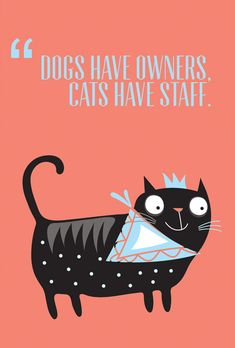 "Kocie cytaty - ""Dogs have owners, cats have staff"""