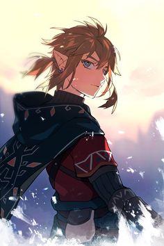 The Legend Of Zelda, Legend Of Zelda Breath, Breath Of The Wild, Link Botw, Twilight Princess, Chica Anime Manga, Fanarts Anime, Fantasy Characters, Elf Characters