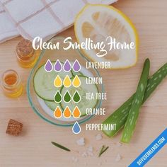 Clean Smelling Home — Essential Oil Diffuser Blend