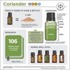 Essential Oil Safety, Essential Oil Companies, What Are Essential Oils, Essential Oil Blends, Coriander Oil, Fennel Essential Oil, Perfume, Oil Benefits, Doterra Essential Oils