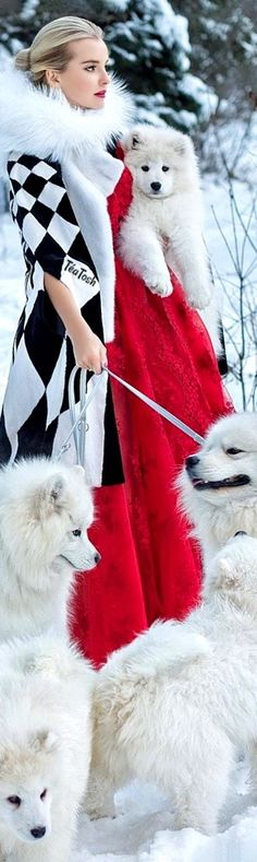 Lady And The Tramp, Black White Red, Wild Hearts, Shades Of Red, Color Combos, Color Splash, Winter Fashion, Snow Fashion, Fashion Photography