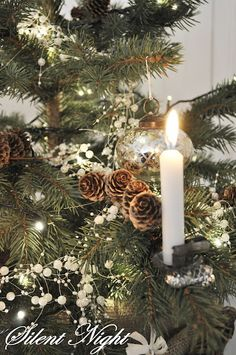 Candle clips for your Christmas tree - Magic! www.christmagiftsfromgermany.com