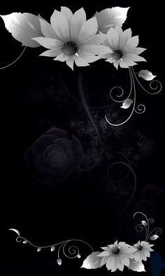 Download 480x800 «In the Shadows, Flowers» Cell Phone Wallpaper. Category: Art & Graphics