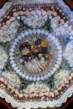 Fine Shell Art Blog - Shells, Shell Art & Other Coastal Delights - Sailor's Valentine from the Philadelphia Shell Show 2012