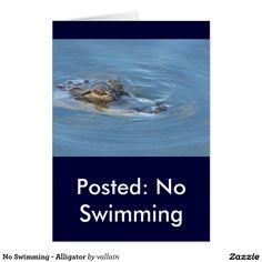No Swimming - Alligator
