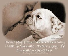 Unlike humans they don't judge, they just unconditionally LOVE