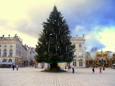 Christmas Tree on Place Stanislas © French Moments