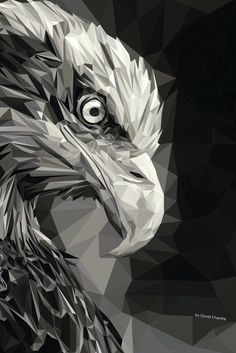 Eagle_low poly : Eagle_low poly on Behance Art And Illustration, Art Sketches, Art Drawings, Illustrator, Eagle Art, Polygon Art, Geometric Art, Fantasy Art, Cool Art