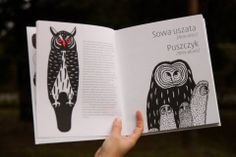 Urban Safari is a social project showing wild animal species living in Warsaw. The book (illustrated by Pani Jurek Edyta Ołdak Paulina Pankiewicz) is the final element of the project.