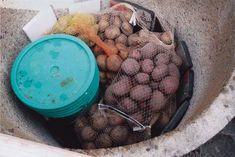 The potato hole