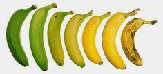 Propiedades medicinales y anti-cancerígenas del plátano o banana.