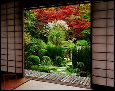 Beautiful Gardens in Kyoto | William Corey Gallery