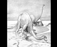 Diplodocus  by Alice B. Woodward (1862-1951)  from Evolution in the Past  1912 England