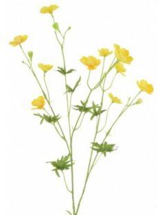 Artificial - Buttercup Spray - Yellow
