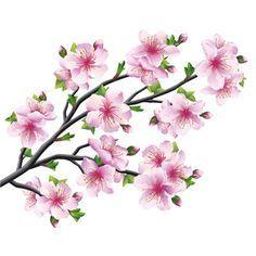 Рисунок Цветков Сакуры
