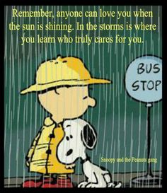 Snoopy e Charlie Brown Charlie Brown Quotes, Charlie Brown And Snoopy, Peanuts Quotes, Snoopy Quotes, Peanuts Cartoon, Peanuts Snoopy, Snoopy Love, Snoopy And Woodstock, Snoopy Pictures