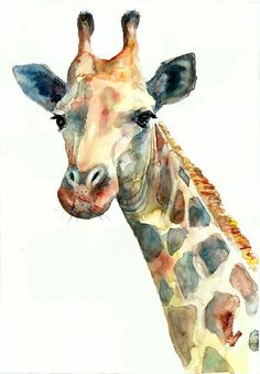 Giraffe watercolor, giraffe poster, African animals, Series - Wildlife. Giraffe Watercolor by 16.05.2016  Print can be signed by me  QUALITY AND