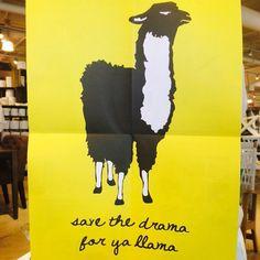 Drama llama. #drama #llama #westelm #westelmoutlet #poster #lancaster #lancasterpa #pennsylvania