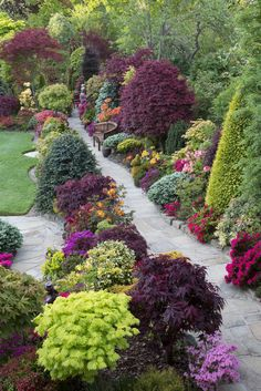 An English garden path with colorful plants / English garden path, colored plants – Marie Claire Maison Back Gardens, Outdoor Gardens, Amazing Gardens, Beautiful Gardens, Colorful Plants, Garden Cottage, Backyard Landscaping, Landscaping Ideas, Backyard Ideas