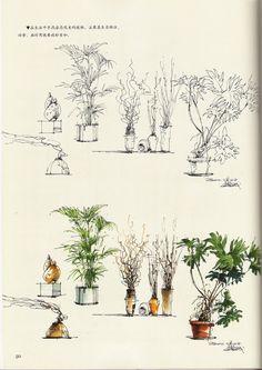 hand renderings plants sketch