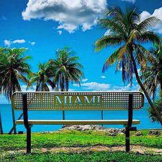 Miami city Photos series 18 – Pictures of Miami city : South Beach Florida, State Of Florida, Miami Florida, Florida Beaches, Miami Beach, Miami City, Downtown Miami, Beautiful Places To Visit, Beautiful Beaches