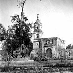 Templo de San Esteban Popotla y Arbol de la Noche Triste Imagen de finales del siglo XIX