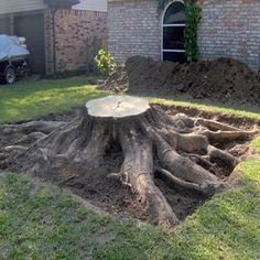 How to Remove a Tree Stump #stepbystep