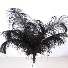 50 pc AWAYTR Natural 8-10 inch Ostrich Feathers Plume Wedding Center Black NEW  | Crafts, Multi-Purpose Craft Supplies, Crafting Pieces | eBay!