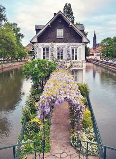 Home is where the heart is. #dreamhome #landscape #flowers #beauty