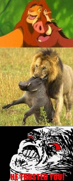 simba and pumba Hakuna Matata, Rage Comics, Funny Comics, Life Pictures, Funny Pictures, Funny Lion, Childhood Ruined, Harry Potter Love, Disney Films