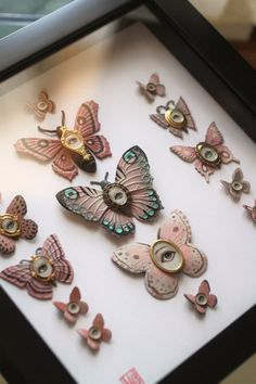 Cabinet of Curiosities Specimen no 73 The Pink  Moth by mabgraves