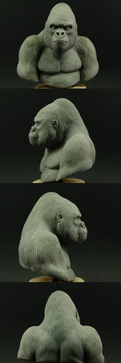 Hi, my latest sculpt - it& a Gorilla Bust in Sculpted in Super Sculpey Firm and Fimo. King Kong, Gorilla Tattoo, Silverback Gorilla, Wood Carving Patterns, Animal Heads, Sculpture Clay, Animal Sculptures, Clay Art, Mammals