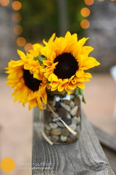 DIY centerpieces with sunflowers - wonder if we could collect enough Yuba rocks for this?