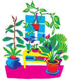 Ode to my plants - Linden T. Carter Illustration