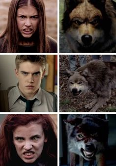 Maddy, Rhydian, and Jana & their wolves
