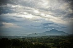 "Rwandan ""Agatogo"" with Collard Greens"