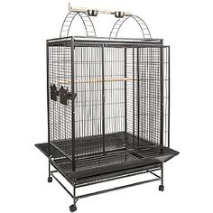 Belize Play Top Parrot Cage has a substantial play gym area for your and similar sized bird to play and exercise. Shop now.This Belize Play Top Parrot Cage has a substantial play gym area for your and similar sized bird to play and exercise. Shop now. Parrot Cages For Sale, Blue Gold Macaw, Parrot Perch, Amazon Parrot, African Grey Parrot, Play Gym, Gym Tops, Conure, Bird Cages