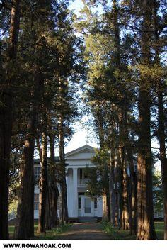 Rowan Oak - home of William Faulkner