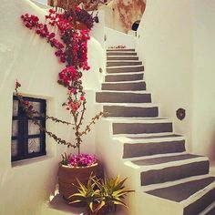 So lovely & colorful Cycladic style , at Kea-Tzia island (Κέα-Τζιά). Holidays in this island offer a truly relaxing experience !