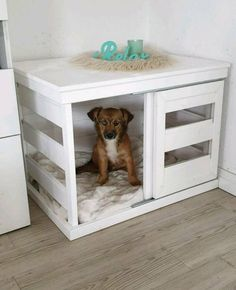 Dog kennel wood white country house shabby chic in Schleswig-Holstein - Kaltenki . Kennel dog box wood white country house shabby chic in Schleswig-Holstein – Kaltenkirchen Dog Room Decor, Dog Crate Furniture, Dog Crate Table, Puppy Room, Dog Spaces, Diy Dog Bed, Dog Rooms, Animal Projects, Animal House