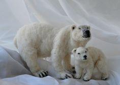 polar bears.. | Flickr - Photo Sharing!