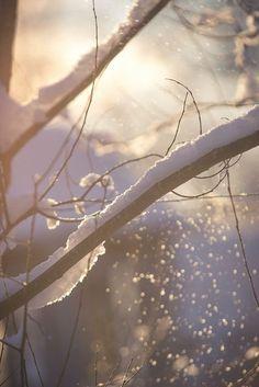 icy-winterland: ❅ In my winter wonderland ❅ Winter Is Here, Winter Is Coming, Winter Time, Winter Pastels, I Love Snow, Cottage In The Woods, Winter House, Nature Scenes, Zine