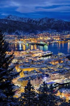 Blue hour in Bergen, Norway