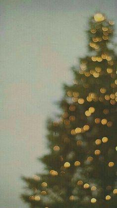 Christmas tree  #Christmas #Wallpaper