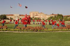 Happy anniversary Texas Tech University! Today marks the day we chose our school colors. We've been bleeding red & black ever since 1926!    Photo by: Texas Tech Today